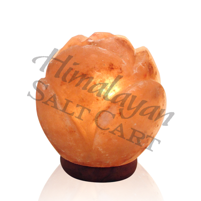 Himalayan Salt Lamp And Plants : Crafted Himalayan Salt Lamps : Himalayan Salt Ball Flower Lamp