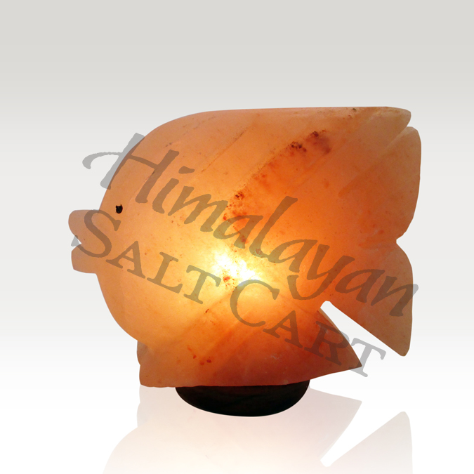 Crafted Himalayan Salt Lamps : Himalayan Salt Fish Lamp